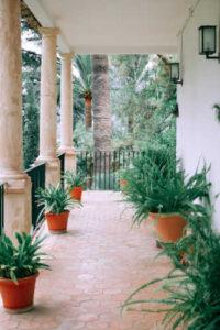 Keep Plants-10 best interior design tips & trends for 2021