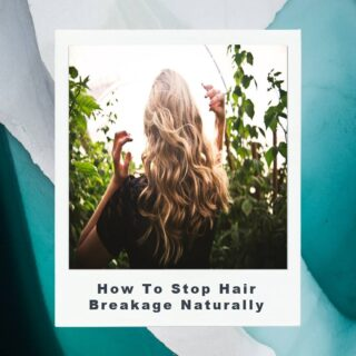 #haircaretips 《How to Prevent Hair Breakage Naturally?》🤷‍♀️👇 . . If you want to stop your hair breakage naturally, here are some of the ideas you can follow. . 1) Eating a healthy diet!🥗 Sometimes, even after knowing how much natural hair breakage is normal, you discover that the volume of your broken hair is above this amount. If that's the case, take a look at your diet and include vitamins, minerals, proteins, and other healthy foods. Try to take fruits and vegetables as much as you can to maintain the inflow of nutrition in your body. . . 2) Avoiding stress as much as possible!💆‍♂️ If possible, avoid stress and a depressing lifestyle at the earliest. Since stress is one of the major causes of hair breakage, you need to avoid such a lifestyle if you do not wish to lose any more hair. . . 3) Keeping yourself hydrated🥛 If you truly want to know 'can hair breakage be repaired', you need to keep yourself hydrated. The water content in your body will prevent the scalp from getting dry, thereby preventing hair breakage.   4) Prevent using too many chemicals on hair!🙅‍♀️ If you are using too many chemical treatments on your hair, immediately stop it. The use of chemicals destroys your hair, and hence, once you stop them, you can save the rest of the shafts.  . 5) Apply oil on the dry scalp💆‍♀️ Another way to prevent the hair breakage is by applying oil on the scalp, provided you have no dandruff, and your scalp surface is extremely dry even after drinking lots of water. . . Head over to our blog #everythingenchanting and check out this article to know more about #hairbreakage, the causes and remedies. Link in bio 👆 . . #haircare #haircareroutine #hairloss #hairlife #hairlove #hairguide #everythingenchantingblog #hairlosshelp #hairlosssolution #hairbreakage #hairblogger #haircommunity