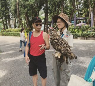 ~ An Owl Is The Wisest Of All Birds Because The More It Sees The Less It Talks! ~ #qotd #travelphotographyoftheday #travelthrowback . . 📸 Location : #oceanpark #hongkong🇭🇰 Have you been to this Ocean Park, Hong Kong?  #everythingenchanting #eeblog  . . . . . . . . #owlsofinstagram #owlstagram #owlsoftheday #owllovers #owlsome #owlface #owlsanctuary #owlphotography #traveltagged #hongkonginsta #visithongkong #parklife #touristattraction #touristspot #touristday #birdphotos #qotd🌸