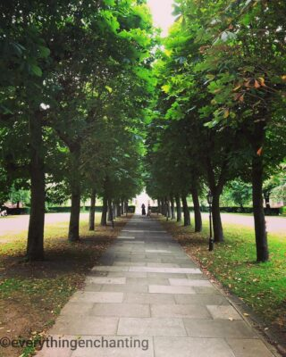 🌳🌿 Allow nature's peace to flow into you as sunshine flows into trees 🌿 ~ John Muir #qotd🌸 #potd📸  Goodnight everyone 💕  . . . . 📸 #piclocation ~ Our  apartment garden #walkway , Pimlico, UK 🌳🌿 #eveningwalk  #peacefulplace . . . . . . . . . . #positivethoughts #positivity #goodthoughts #naturequotes #naturephoto #natureshot #trees #treesofinstagram #treephotography #treeoflife #treescape #greatbritain #visitlondon #gardenphotography #gardenview #lane #portraitphotography #anaeverythingenchanting #everythingenchanting